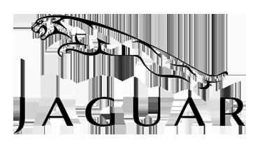 Image Logo Jaguar Deluxe Alquiler de coches