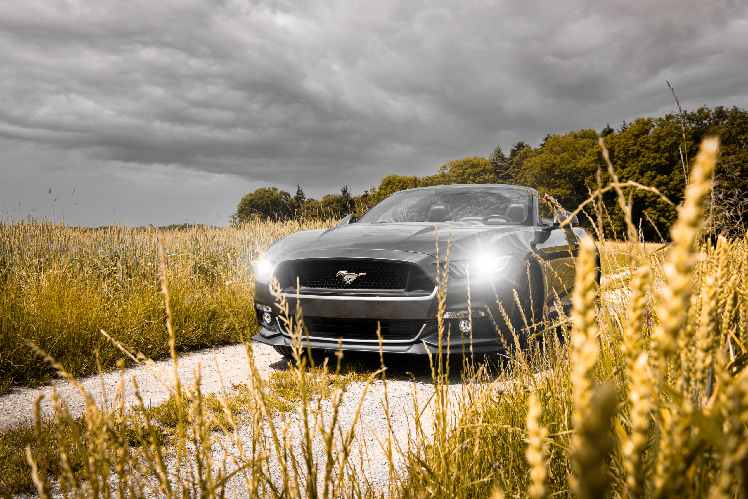Ford Mustang - Deluxe Rental Cars